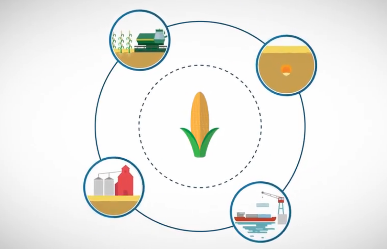 什么是农产品期货,农产品期货都包含有哪些